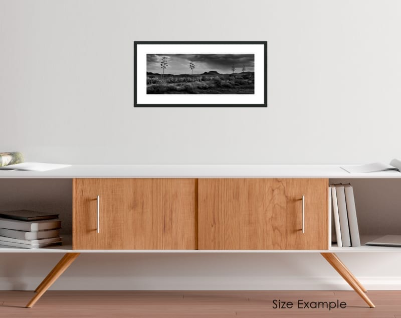 South Africa black and white collectors framed print 2