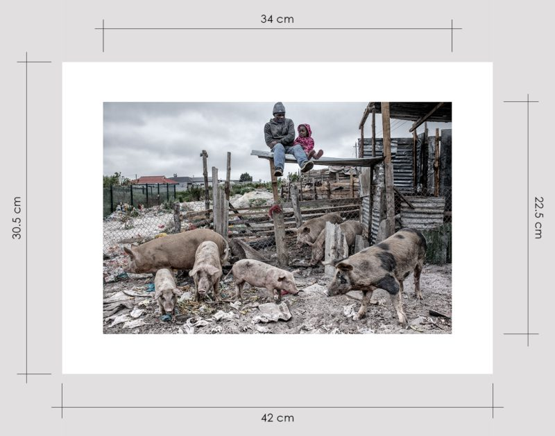 Pig Breeder and Daughter Limited Edition Prints