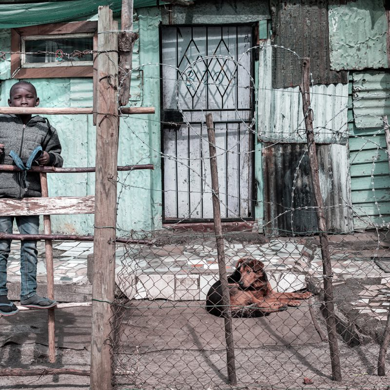 Boy in Barbed Wire House