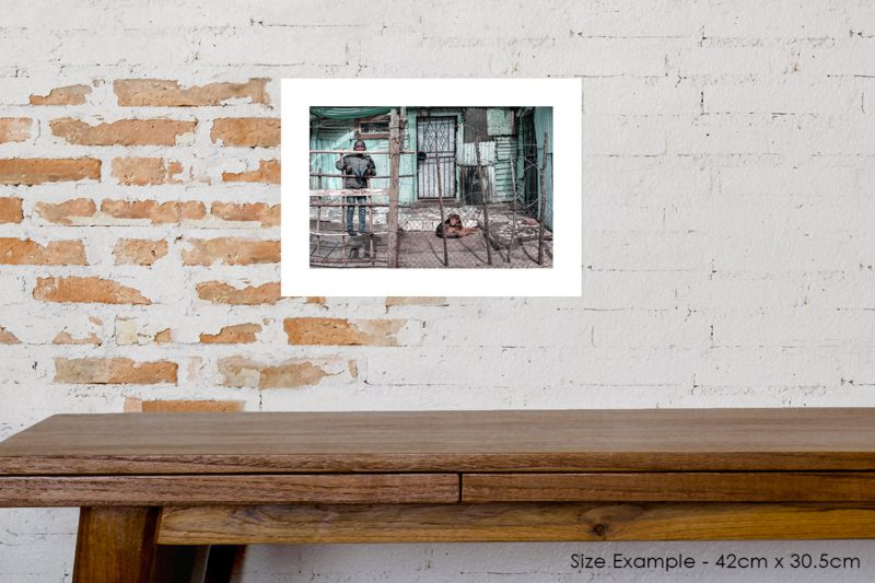 Boy in Barbed Wire House Prints
