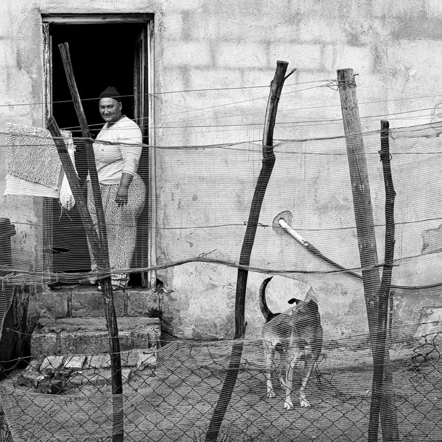 Curious Woman with Dog